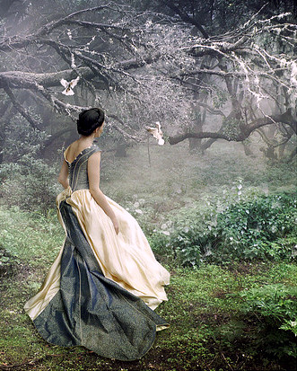 creepy,writing,prompt,forest,fairytale,fantasy,fashion-4c57db41f7092a9c7d311e492d4abad7_h[1]