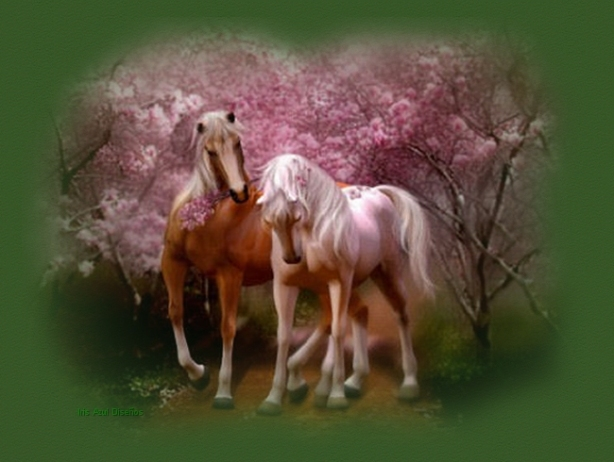 caballos-romanticos-imagen